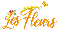Les Fleurs • Location pour vos vacances en Provence !