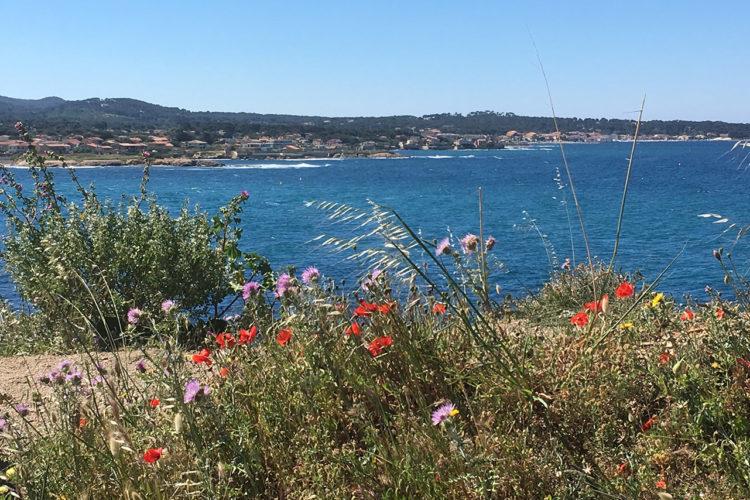 Promenez vous dans le Parc de la Méditerranée